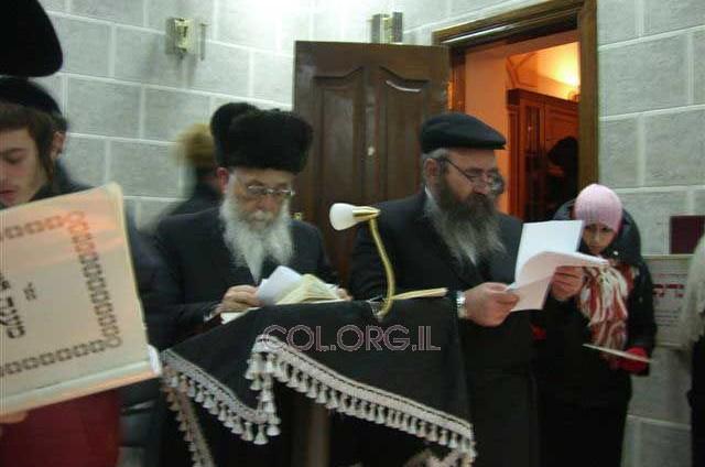 קבוצת חסידים בתפילה בציון בהאדיטש