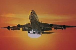השליח הטרי זכה בכרטיס טיסה לרבי