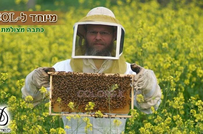 המסע אל הדבש