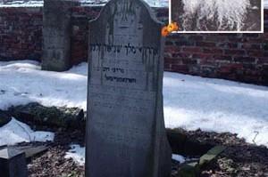 בקרקוב התגלה קברו של נין אדמו