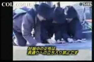 שכונת קראון-הייטס בעין יפנית ● וידאו מיוחד