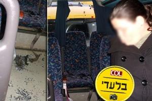 התלמידות נדחסו בקדמת האוטובוס, משאית התנגשה מאחור