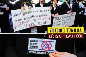 עם תג פלסטיני ביד, קיצונים הפגינו בקראון-הייטס ● וידאו