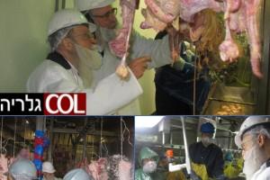 פוסטוויל: הרב אזדאבא בביקור במפעלי הבשר של רובשקין