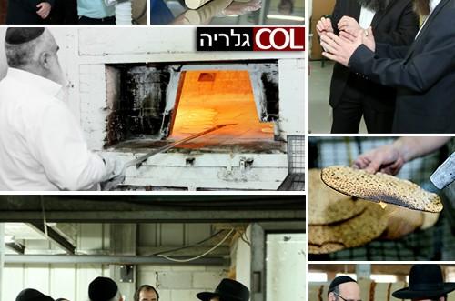 הרב אשכנזי ביקר במאפיית המצות בכפר-חב