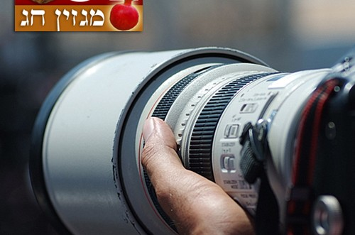 הצלמים המובילים בוחרים את תמונת השנה ● פרויקט מיוחד