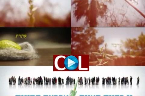 חב״ד במדיה מציגים: סרטון להפצה עם מסר לסוכות