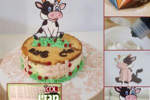 טלי מיימון מגישה: קורס מהיר וחזותי לעיצוב עוגה