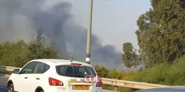 שריפת קוצים ליד כפר חבד