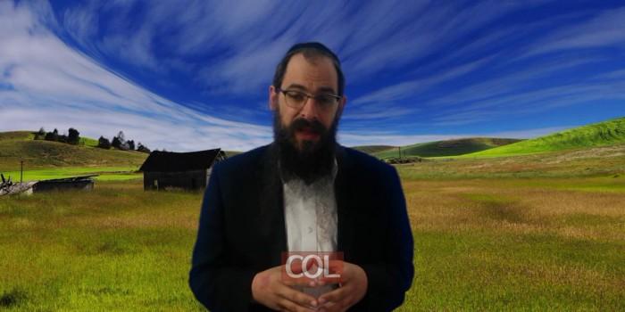 019 גבול שלילי או מדריך   הרב מנחם הלפרין   אור החינוך