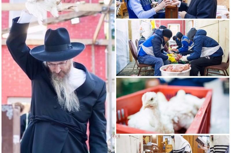 אשמורת הבוקר בבירת רוסיה: כפרות ולעקח במוסקבה