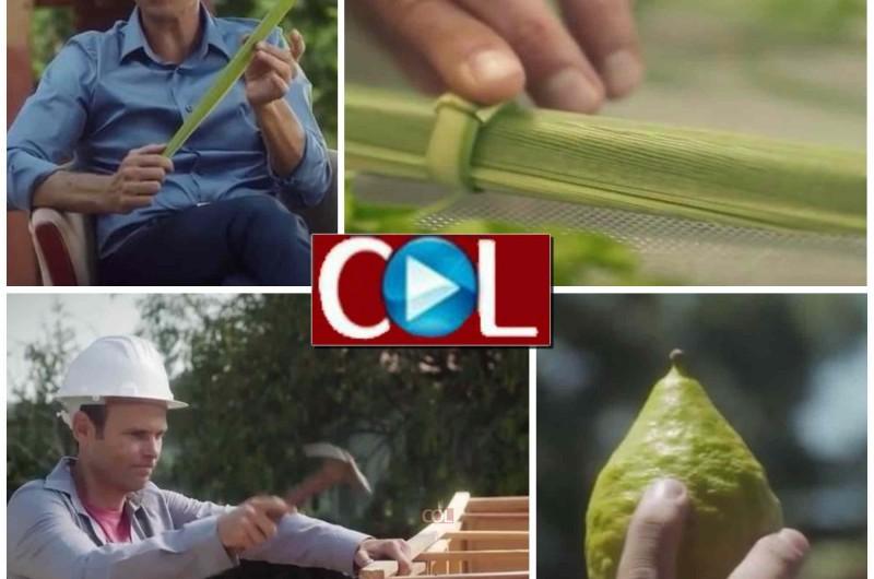 'ערוץ יהדותון' מציג: סדרת סרטוני הדרכה לחג הסוכות • צפו