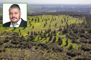 שרון גושן ממליץ: טיול חד יומי מהנה לאיזור חיפה וזיכרון יעקב