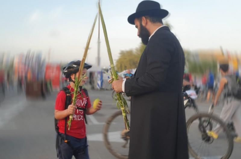 עשרות אלפי רוכבי אופניים זוכו ב'מבצע לולב' הגדול בישראל