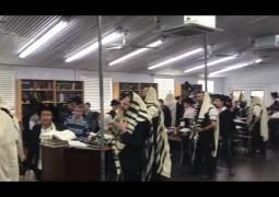 מאת ה' היתה זאת: קבוצת ילדי הפנסאים בתפילת הלל של שחרית, ראש חודש שבט