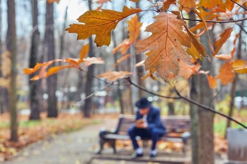 מגיפת הקורונה:  אסור לצאת לפארקים, קניונים או גינות משחקים