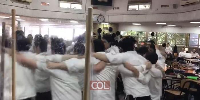 'יצאו מהניילונים', וכעת הם רוקדים: איחוד 'קפסולות' בתות