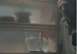 שכן, שים לב אם אני חסר: קמפיין למען הקשישים והגלמודים, שנותרים לבד בבית. הפקה: זק