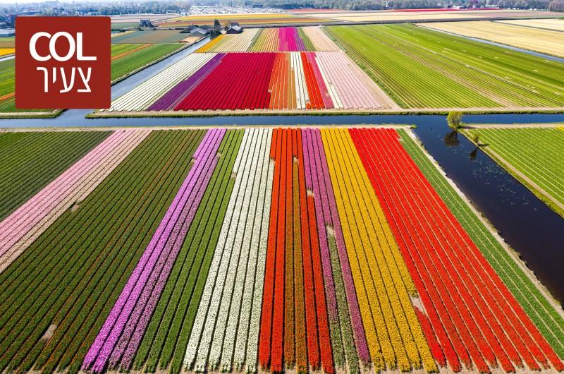 אביב הגיע: הצצה לגינה הגדולה בעולם