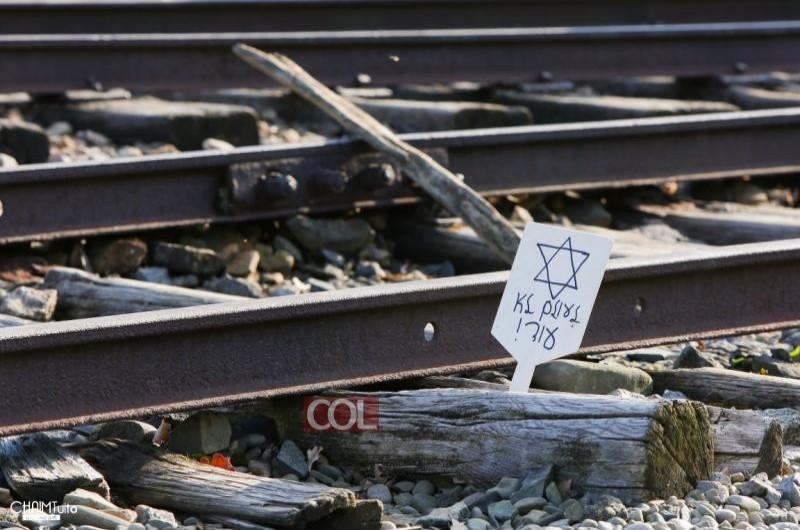 בסוף שנת 2019 מספר היהודים בעולם היה 14.8 מיליון נפש