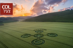 כשיצירות אמנות מסתוריות צצו בין לילה בשדות החיטה באנגליה