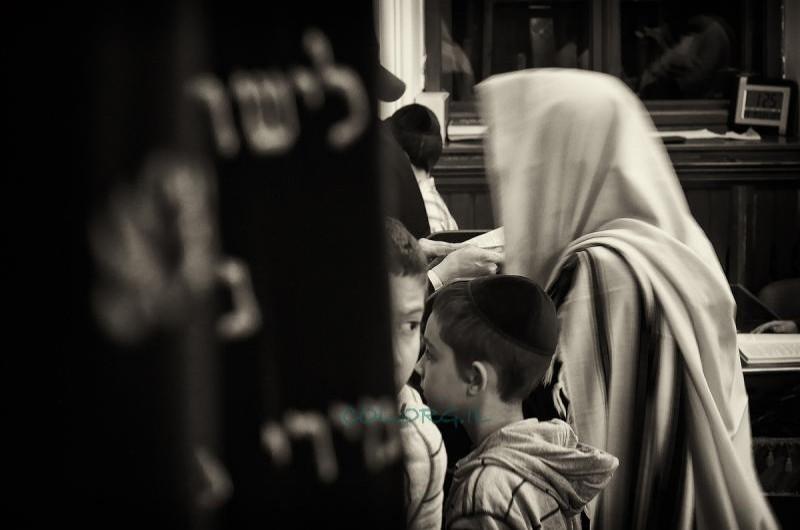 פרויקט COL: בכמה מכרו 'מפטיר יונה' בבתי הכנסת חב