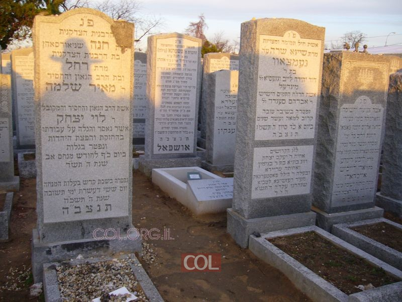 ציון הרבנית חנה